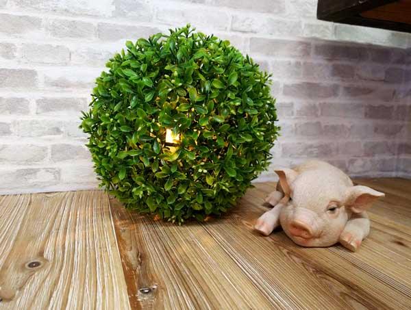 グリーンボールとうたた寝豚