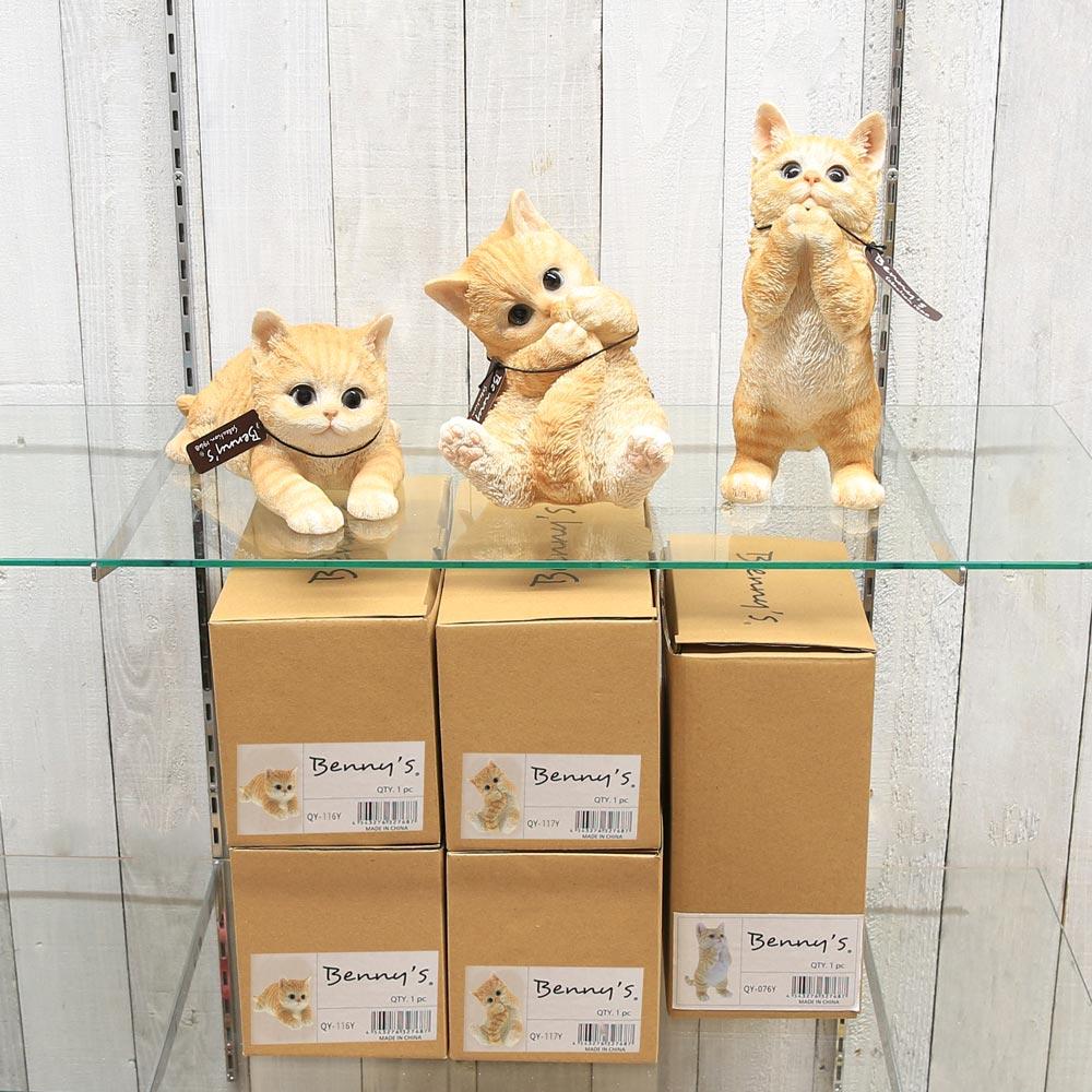 ディスプレイ_新BOX