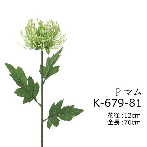 K-679-81