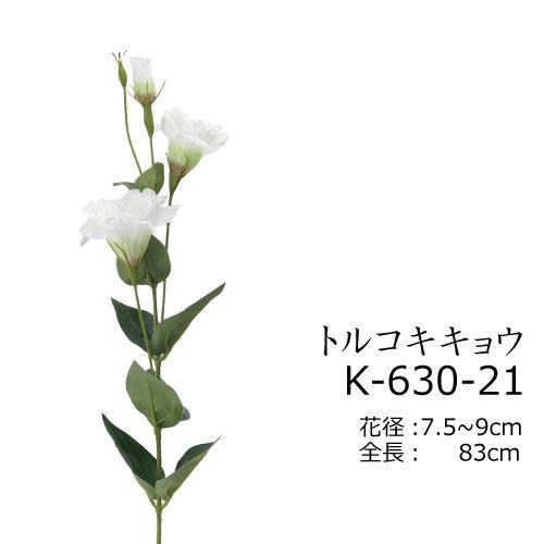K-630-21