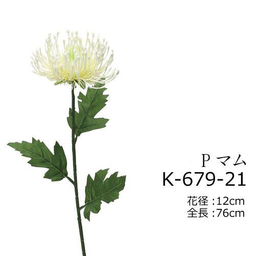 K-679-21